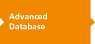 Advanced Database, written on orange puzzle piece
